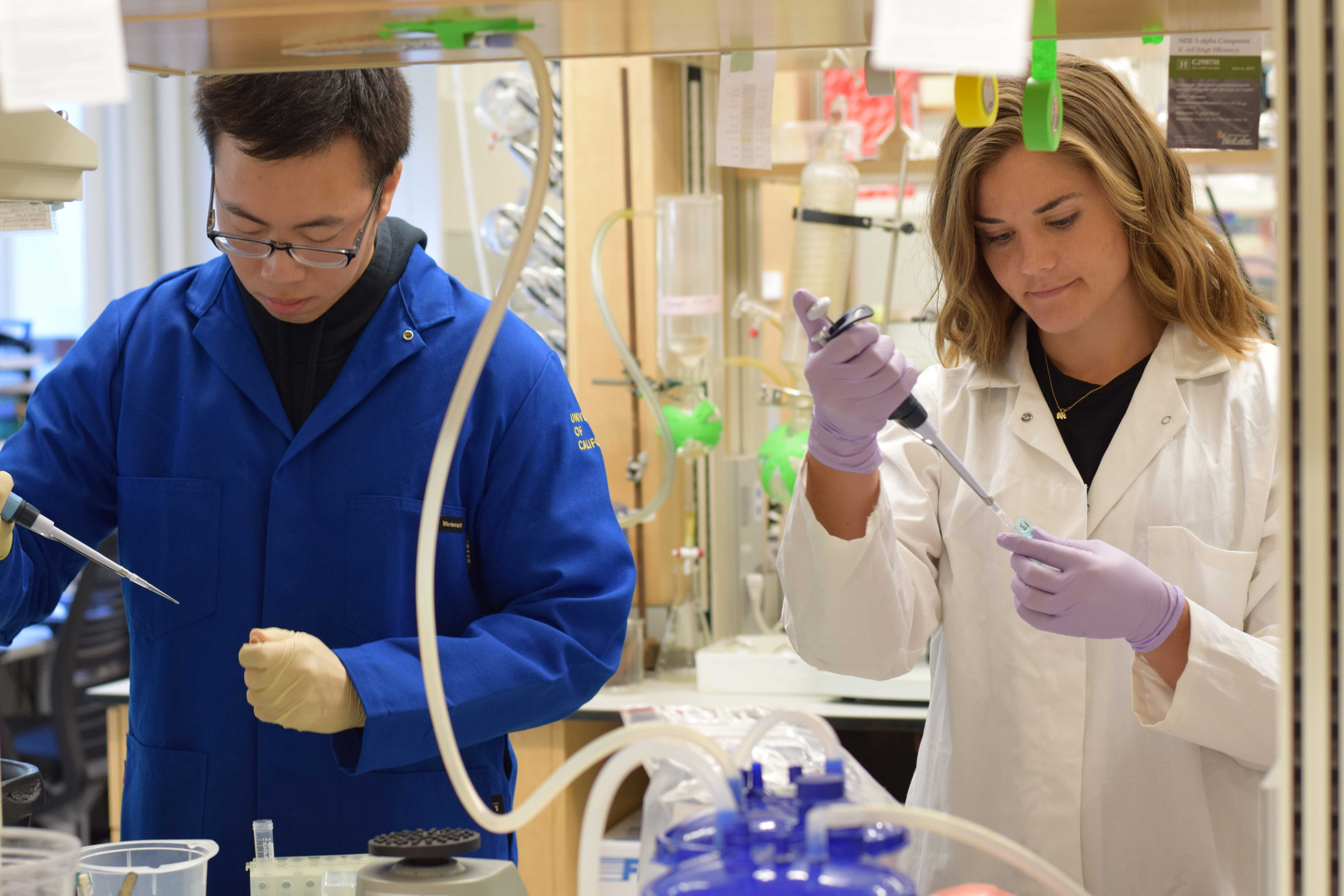 Researhers in a lab.