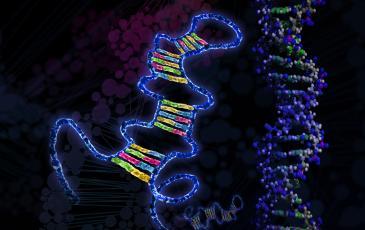 Closeup image of miRNA